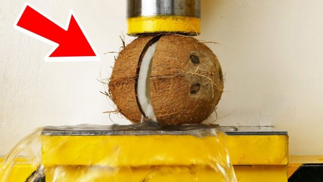 Hydraulic Press VS Coconut And Other Fruits
