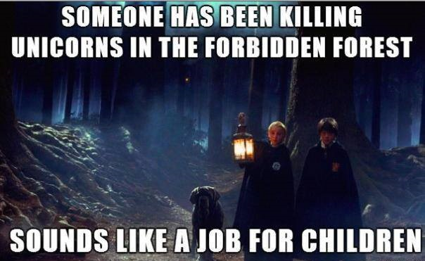 47 Best Funny Harry Potter Memes