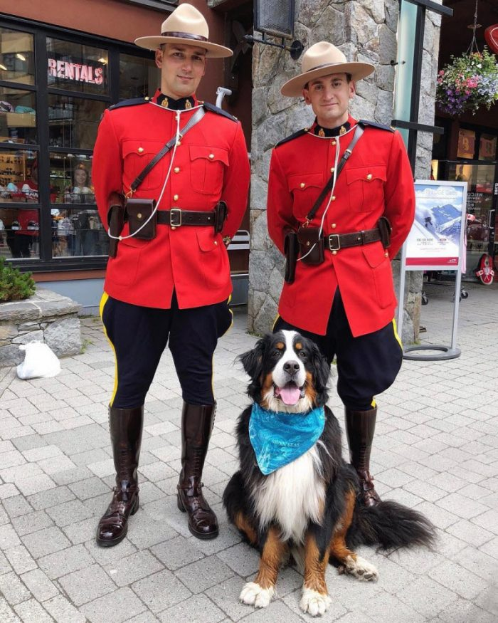 28 Funny Pictures From Canada