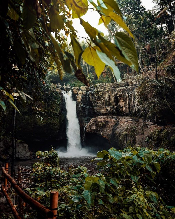 Travel And Adventure In The Pictures Of Lloyd Evan