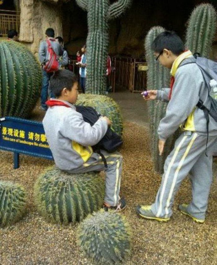 Most Funny And Strange Pictures From Asia (27 Photos)