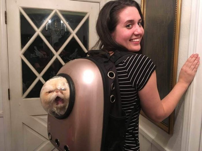 Funny Pictures To Make Your Day (65 Photos)
